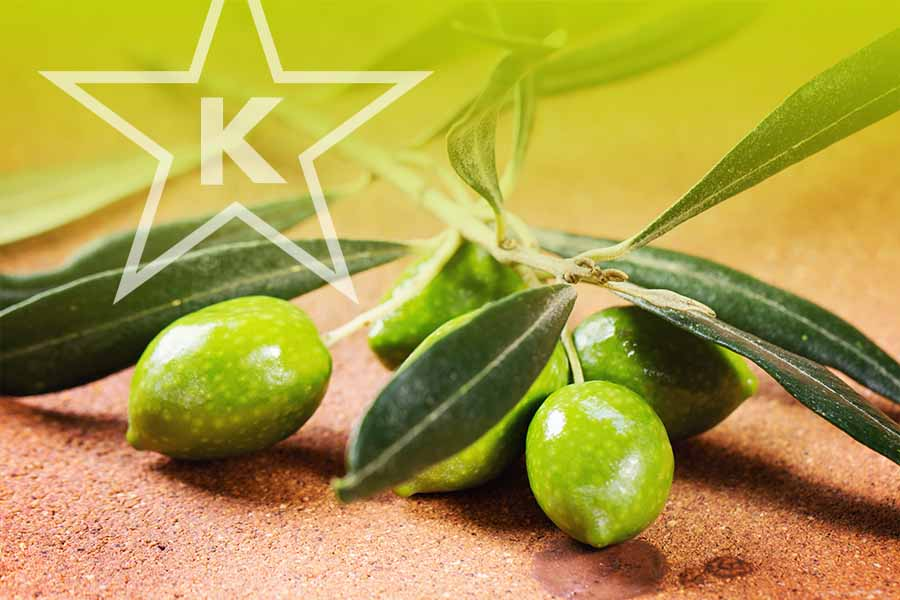 Greek Table Olives: Yaft Elokim L'Yefes Vishkon B'SHULCHONEI Shem