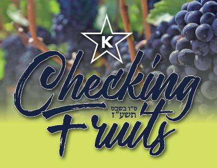 checkingfruiticon
