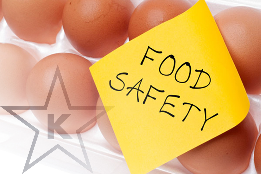 Danger-Sakana: Keeping Our Food Safe & Healthy